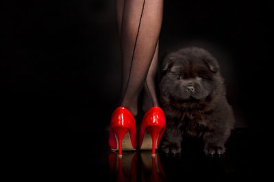 carla-ghysels4-400x266 Noticias de perros - Inicio