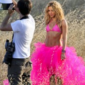chihuahua Shakira.noticiasdeperros.com